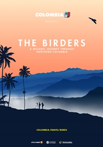 The Birders: A Melodic Journey Through Northhern Colombia | Teatrino