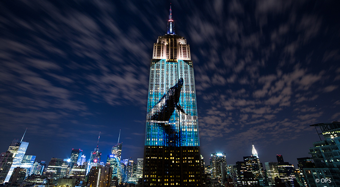 Racing Extinction, Louie Psihoyos, Cinemateca