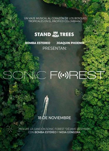 sonic forest